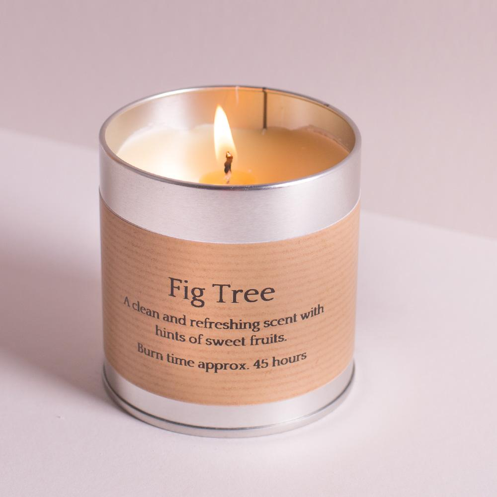 Инжирное дерево St Eval candle co. свеча в металле